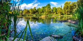 Mały staw w brzeg rzeki parku w białorybie, MT Obraz Royalty Free