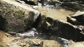 Mały strumień w górach zbiory wideo