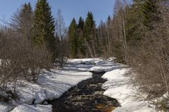Mały strumień w lesie dokąd odwilż zaczynał Obraz Royalty Free