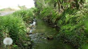 Mały strumień w wsi zbiory