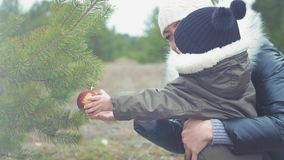 Mały syn i dekorujemy choinki outdoors Portret rodziny kochający zakończenie up Pojęcie Wesoło zdjęcie wideo