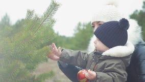 Mały syn i dekorujemy choinki outdoors Portret rodziny kochający zakończenie up Pojęcie Wesoło zbiory
