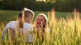 Mały uśmiechnięty chłopiec obsiadanie w banatce na polu Lato natura, chodzi outdoors Dzieciństwa szczęście zbiory wideo