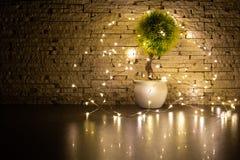 Mały zabawkarski drzewo otaczający girlandą z dekorującym ściennym tłem fotografia w zmroku zdjęcia royalty free