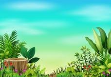 Mały zielonej rośliny botaniczny krajobraz ilustracji