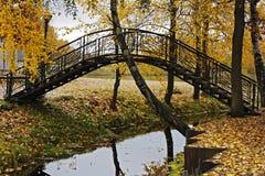 Mały zwyczajny most w jesień parku Obrazy Royalty Free