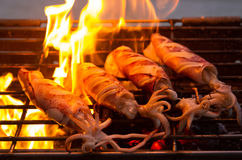 Maślany świeży kałamarnica grill zdjęcie stock