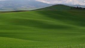 Ma?ana en Toscana