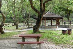MA auf Shan Country Park Hong Kong stockbilder