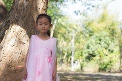 Mała azjatykcia dziewczyna z drzewem Obraz Royalty Free
