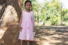 Mała azjatykcia dziewczyna z drzewem Fotografia Royalty Free