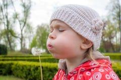 mała dandelion dziewczyna Zdjęcia Stock