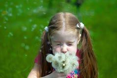 mała dandelions dziewczyna Zdjęcia Royalty Free