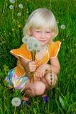 mała dandelions dziewczyna obraz stock