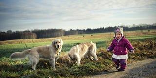 Mała dziewczyna z psami Obraz Royalty Free
