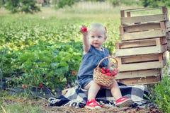 Mała dziewczynka je truskawki Obrazy Stock