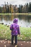 Mała dziewczynka karmi kaczki na stawie w parku Obrazy Stock