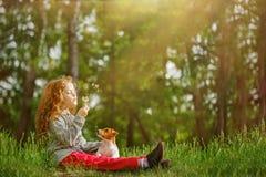 Mała dziewczynka obejmuje jego podmuchowego dandelion i psa Obraz Royalty Free