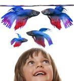 Mała dziewczynka patrzeje akwarium Zdjęcia Royalty Free