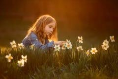 Ma?a dziewczynka plenerowy portret blisko narcyza kwitnie przy zmierzchem fotografia royalty free