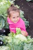 Mała dziewczynka siedzi w kapuscie w ogródzie Zdjęcia Royalty Free
