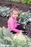 Mała dziewczynka siedzi w kapuscie w ogródzie Obraz Stock