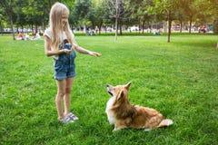 Mała dziewczynka trenuje psa Zdjęcia Stock