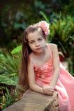 Mała dziewczynka w sukni Obraz Stock