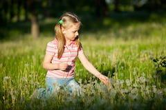 Mała dziewczynka z dandelions Obraz Royalty Free