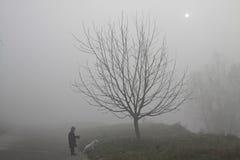 Mała dziewczynka z jej psim odprowadzeniem w tajemnicy mgle Obraz Royalty Free