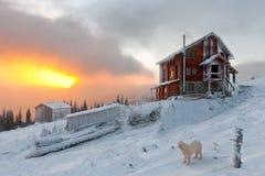 małe domowe góry Fotografia Stock