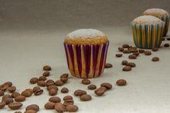 Małe domowej roboty babeczki z sproszkowanym cukierem, kawowe fasole Obraz Stock