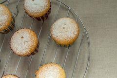 Małe domowej roboty babeczki z sproszkowanym cukierem na stojaku dla piec Fotografia Royalty Free
