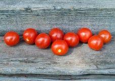 małe pomidorów Fotografia Stock