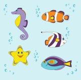 Małe ryba Zdjęcia Royalty Free