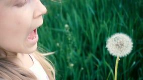 Małej dziewczynki dmuchanie przy dandelion kwiatem na zielonym gazonie zbiory wideo