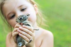 Małej dziewczynki mienia dziecka królik Zdjęcia Royalty Free