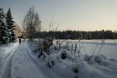 Małej zimy drogowy odprowadzenie w drewnach fotografia stock