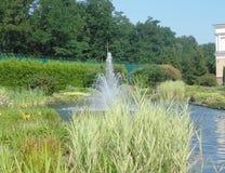 mała fontanna Zdjęcie Royalty Free