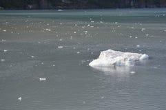 Mała góra lodowa obraz royalty free