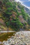 Mała halna rzeka Zdjęcie Stock