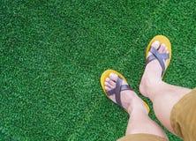 Ma jambe au-dessus d'herbe verte photographie stock