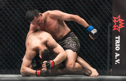 Ma Jia Wen of China and Yohan Mulia Legowo of Indonesia in One Championship. BANGKOK - MARCH 11 : Ma Jia Wen of China and Yohan Mulia Legowo of Indonesia in One Stock Photography