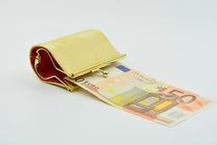 Mała kiesa dla dziewczyn Euro w kiesie Fotografia Royalty Free
