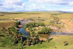 Mała laguna w granu sabana Wenezuela Zdjęcia Stock