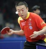 Ma_Lin(CHN)_1 Stock Image
