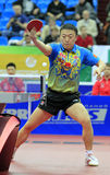 Ma Lin (CHN) Stock Images