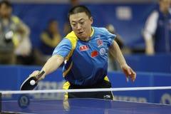 Ma Lin (CHN) royalty-vrije stock foto's