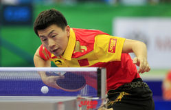 Ma Long (CHN) Royalty Free Stock Images