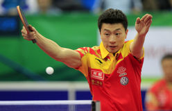 Ma Long (CHN) Stock Photography